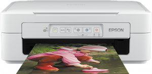 Epson XP-247 Cartuchos Compatibles